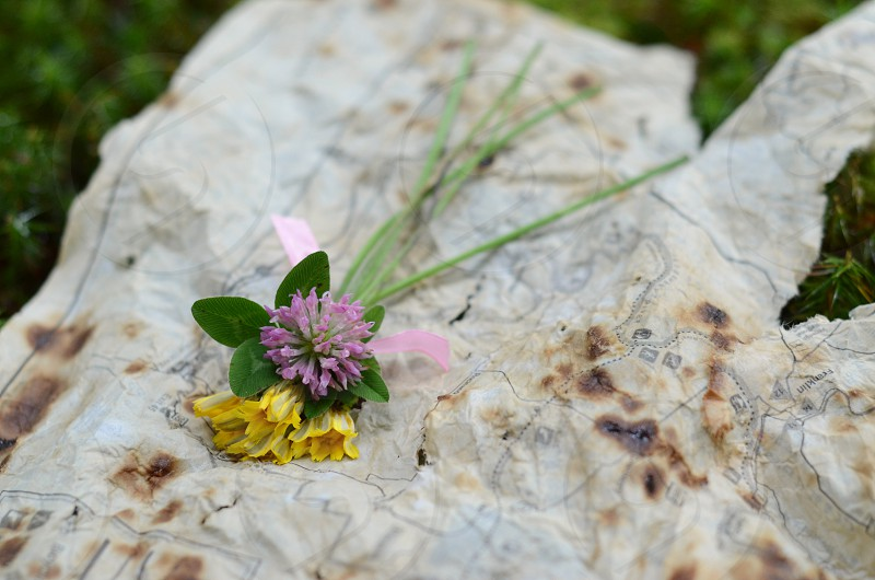Map and Wildflowers: Bouquet Aged Weathered Stained Torn Tattered Old Journey Escape Woods Hike photo