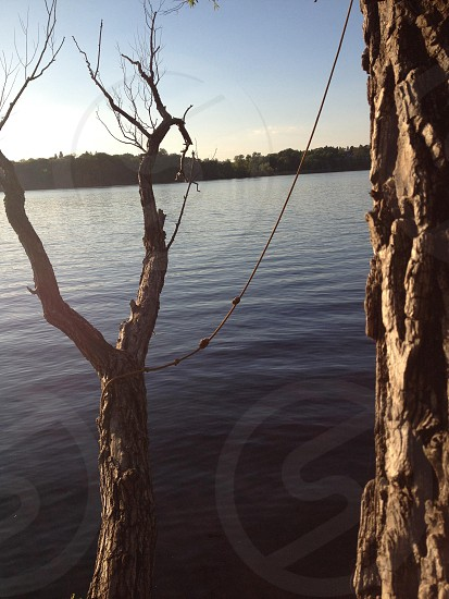 Strings lines and ropes // Lake photo