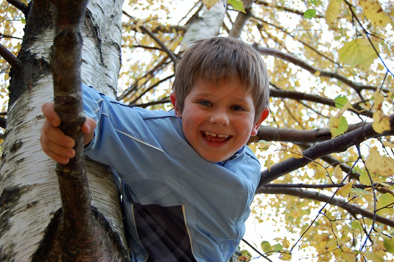boy in blue zip up jacket on tree branch photo