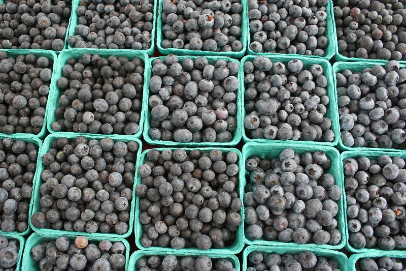 blueberries farmers' market fruit photo
