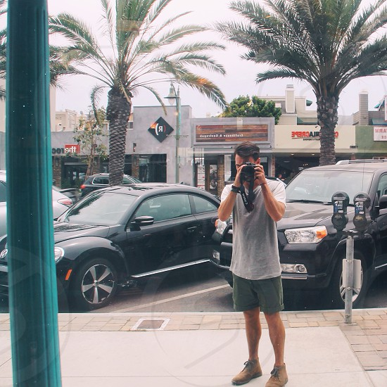 Mirrors and palm trees  photo