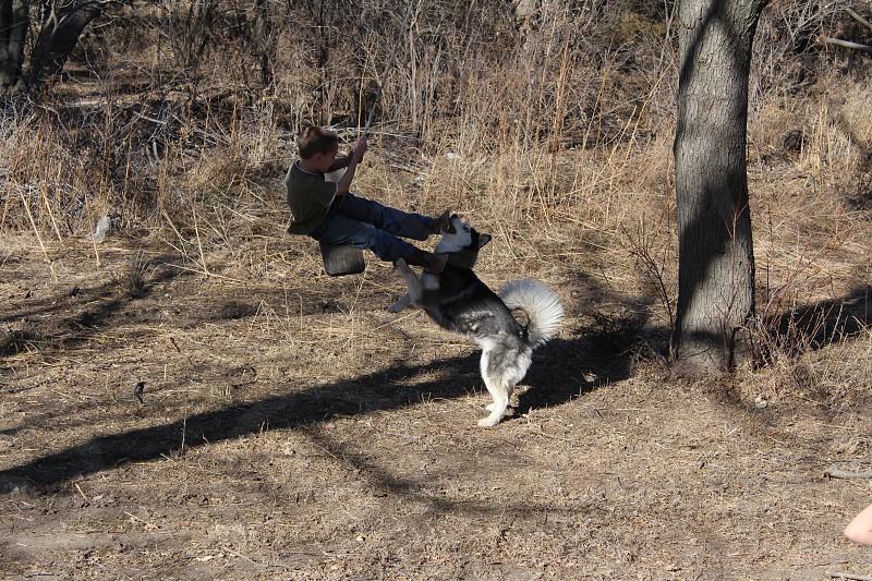 It's my turn to swing!  photo