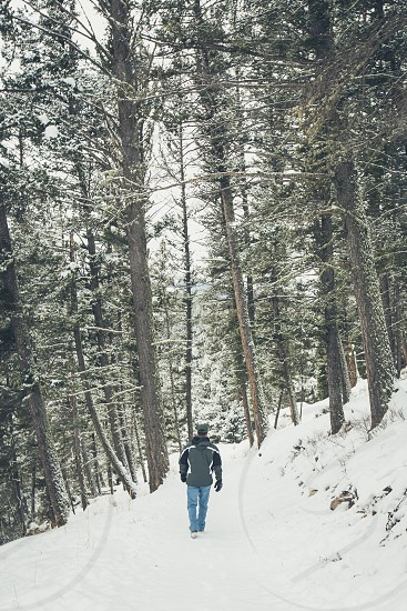 A man hiking through a forest in winter photo
