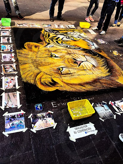 In El Centro in Guadalajara Mexico and noticed this man making this wonderful art on the floor.  photo