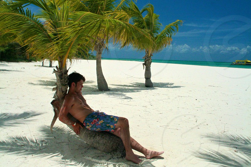 man sitting on palm tree at seashore photo