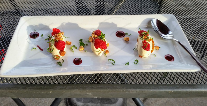 Delicious looking desert plate with three morsels. photo