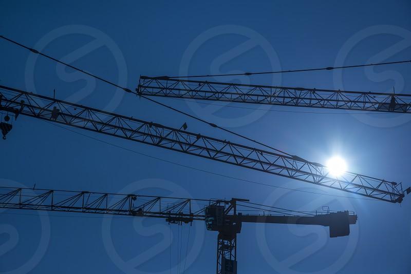 Cranes in Berlin photo
