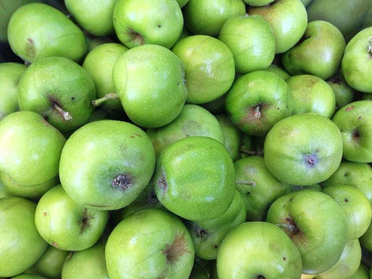 A Bowl of Backyard Apples photo