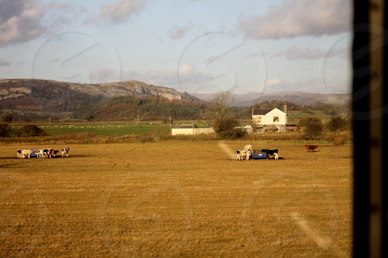 Speeding scenery View from  train crossing the River Trent Estuary photo