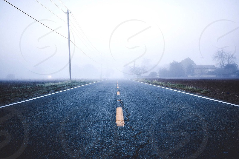 straight road between short grass lawn and line of utility poles leading to misty end photo