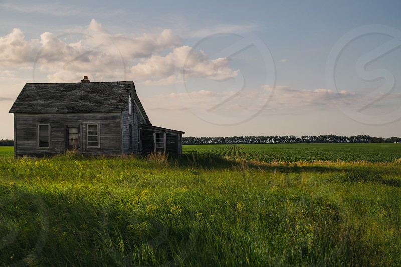 gray house in the middle of green grass photo
