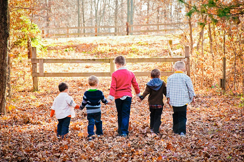 FAMILY OUTING   COUSINS taking a walk through the woods all boys! photo