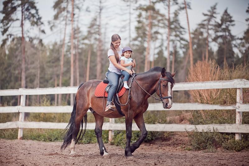 Mother daughter family portrait outdoor nature equine equestrian animals park sport summer activities riding horseback  photo