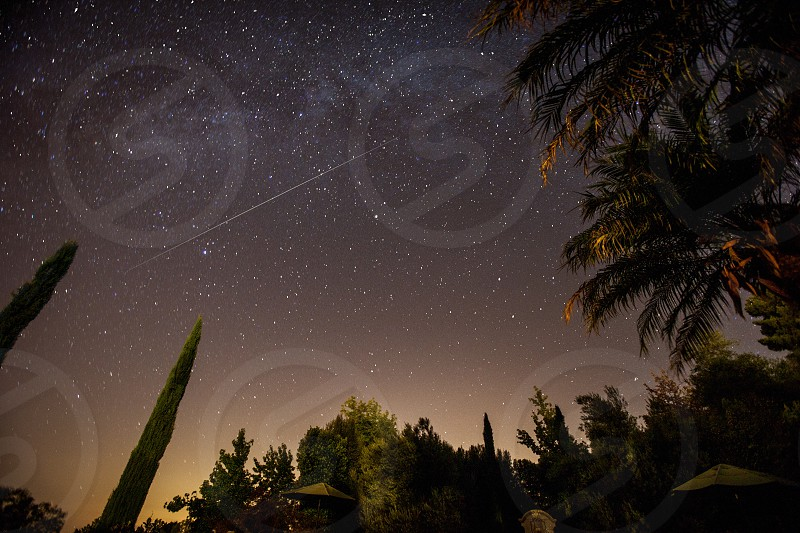 A meteoroid / falling / shooting star across the night sky with umbrellas and palm oral maple and juniper trees in the foreground. photo