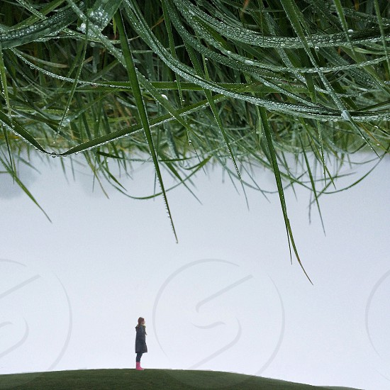 photo of woman standing on grassy lawn photo