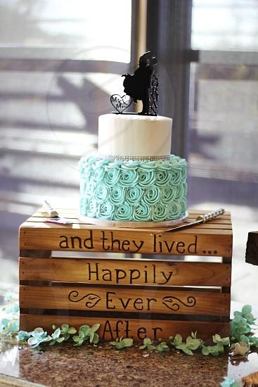 cakeweddingbluerosesfairytaletoppermarriageceremonyreception.happywoodrusticmodernsparkleloveicingfooddessertaquamarine photo