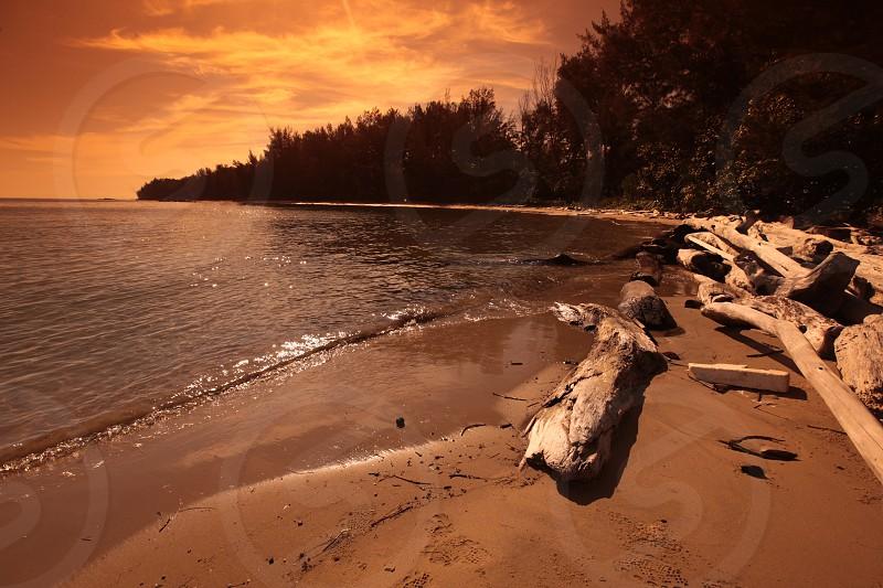 ASIA BRUNEI BORNEO BANDAR SERI BEGAWAN DARUSSALAM SEA LANDSCAPE WATERSCAPE NATURE OCEAN SEA ISLAND  COAST SOUTH CHINESE SEA BEACH  photo