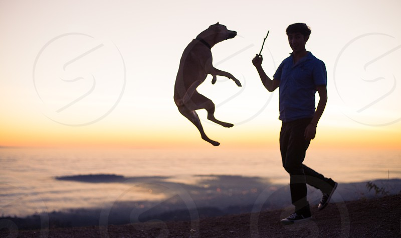 dog kid playing photo