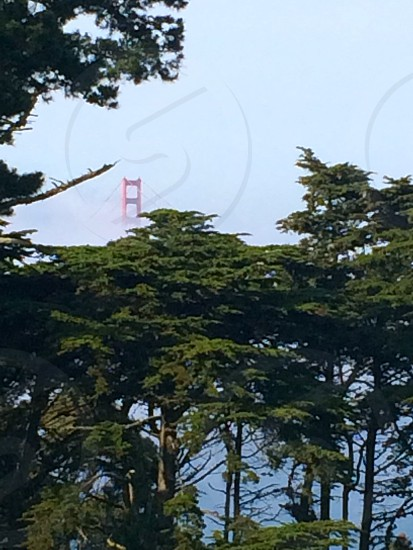 SFO Golden Gate Bridge photo