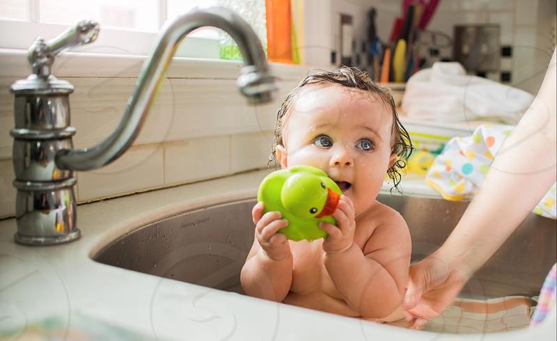 Bathtime in the Kitchen Sink  photo