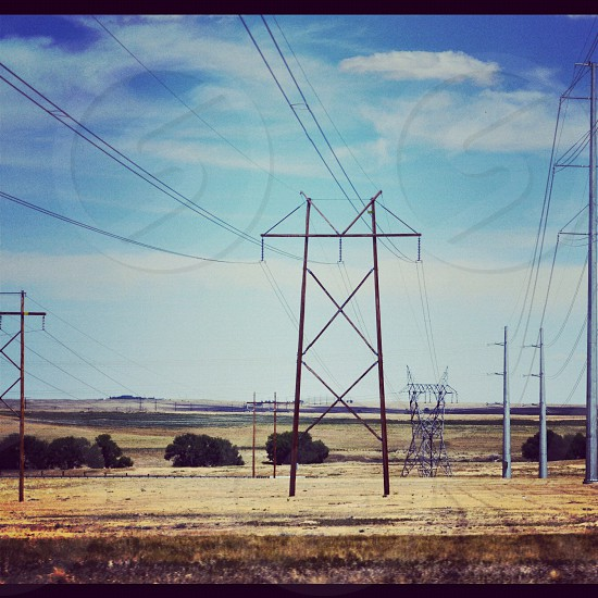 black powerlines above grassy field photo