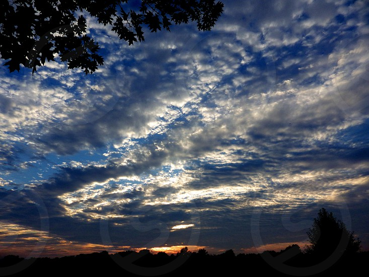 Sunset in the forest with puffy clouds on a blue sky at twilight. photo