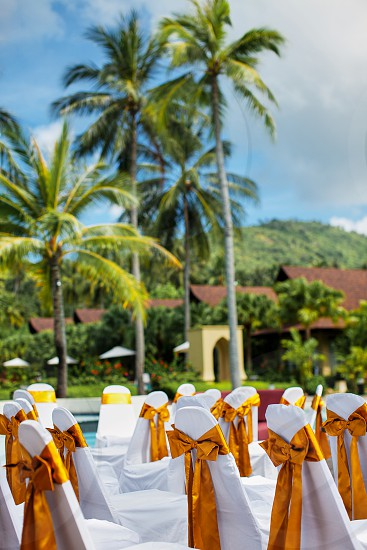A group of white spandex chairs with gold sash organza decoration for beach wedding venue setting with coconut palm tree background photo