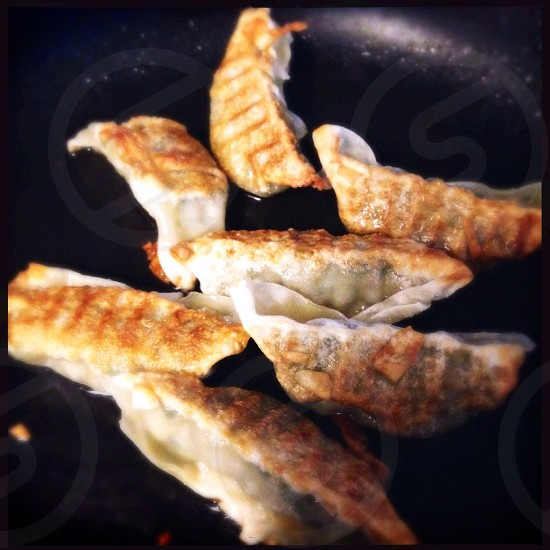 Pan fried dumplings photo