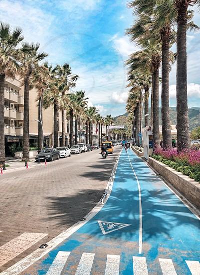 road blue city sky cars palm  photo