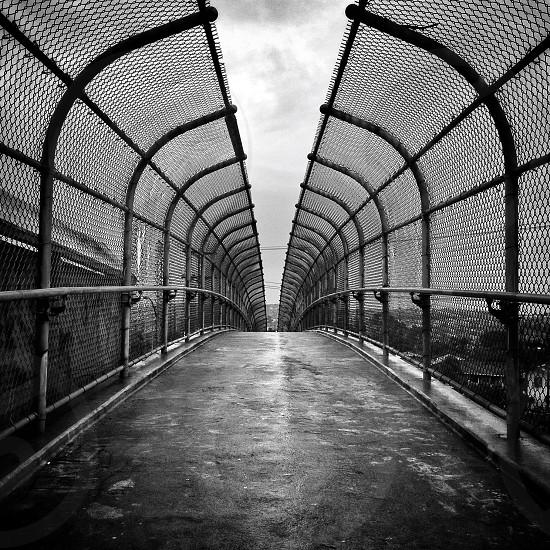 black metal fence photo