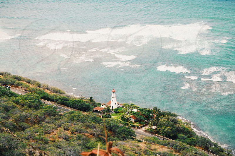 Of the shores of Hawaii. photo