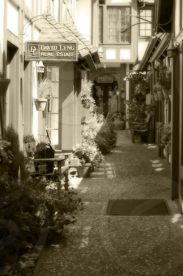 An Alley in Carmel CA. photo