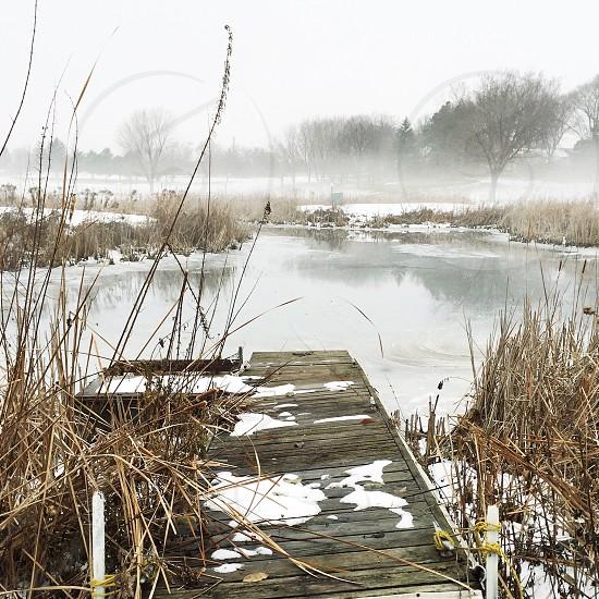 grey wooden swamp dock on snow photo