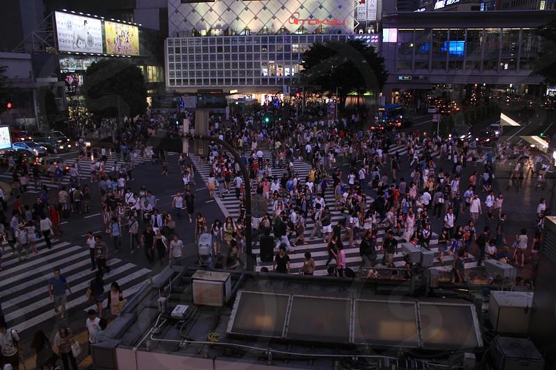 Shibuya Crossing one of the busiest pedestrian crossings in the world - Shibuya Tokyo Japan photo