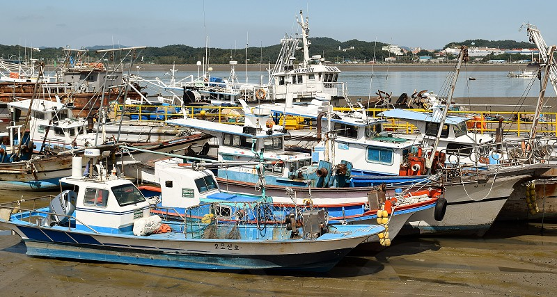 Fishing boats beached at low tide in Gunsan photo