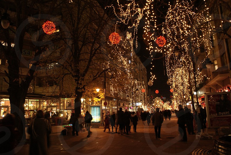 people walking on street and lighted christmas light decor photo