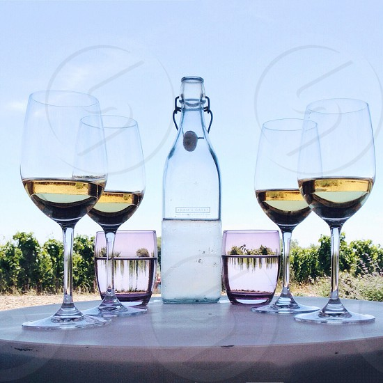 clear long stemmed wine glasses with wine photo