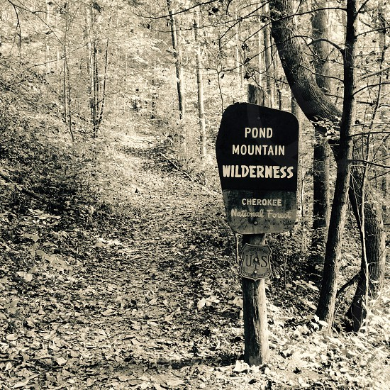 pond mountain wilderness cherokee photo