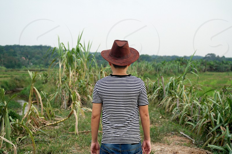 boy in brown cowboy hat and black and white stripe t shirt facing in sugar cane during daytime photo