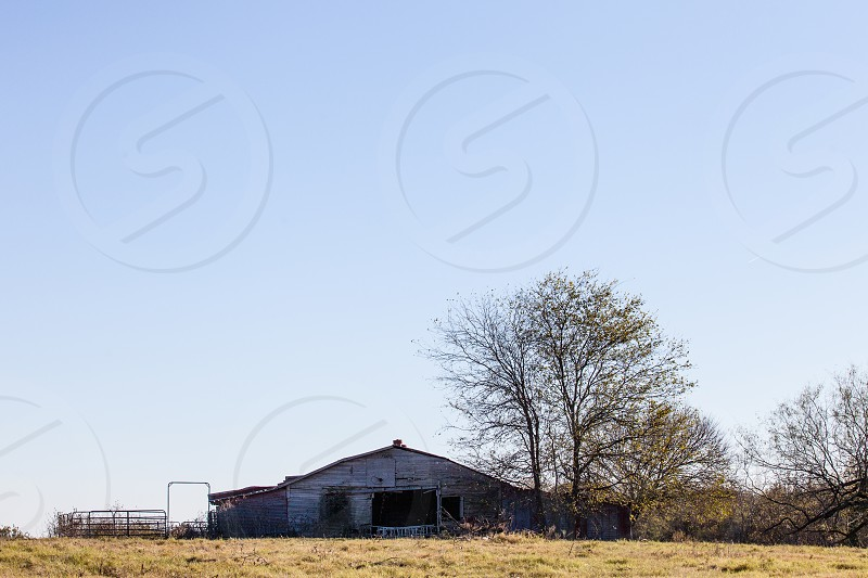 Old barn on the edge of a pasture on the farm. photo