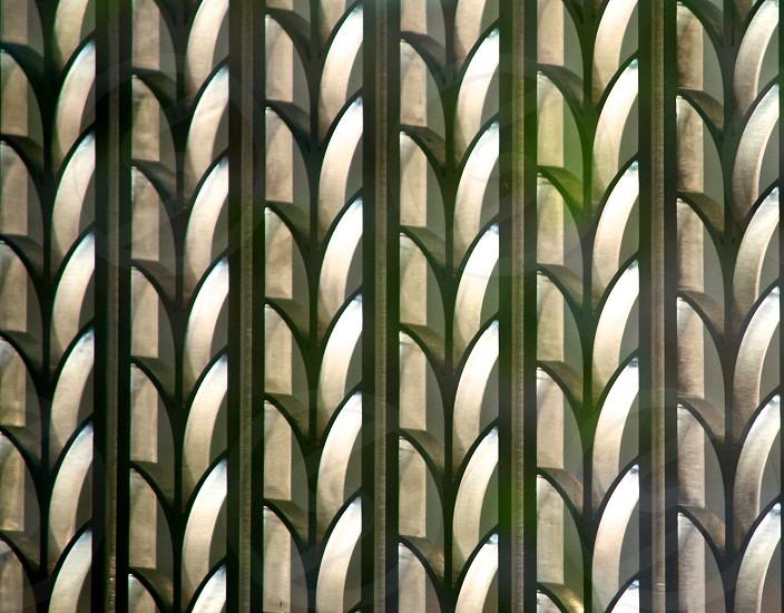 plant branch rows decorative iron bars photo