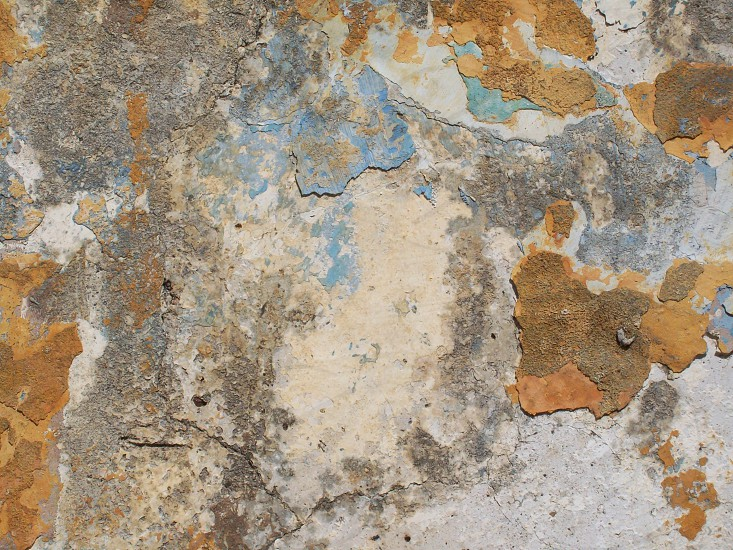 paint - erosion - shabby - tatty - peeling 0 decaying - rotten - distemper - water based paint - architecture - colour - faded - subtle - character - history photo