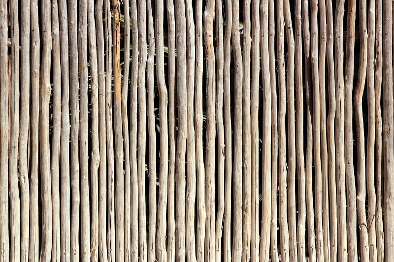 stick white wood trunk fence in tropical Mayan wall photo