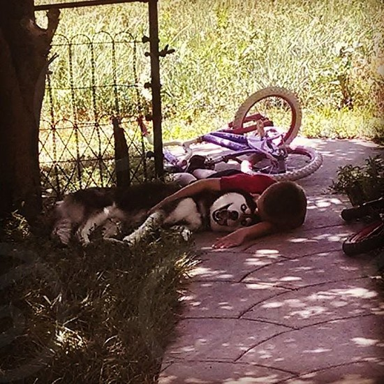 A boy and his dog just relaxing in the shade.  photo