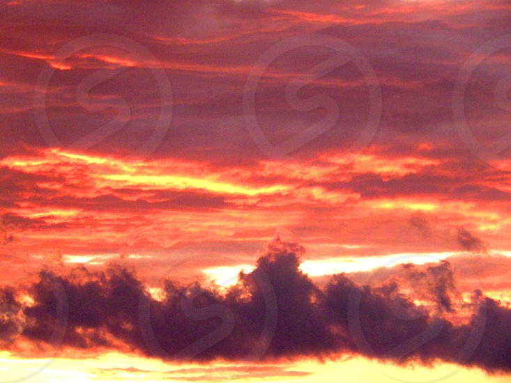 Sunset sky on fire with streaks of clouds in red and orange and yellow photo