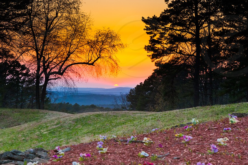 Springtime Sunset in the Ozark Mountains with spring flowers in the foreground photo