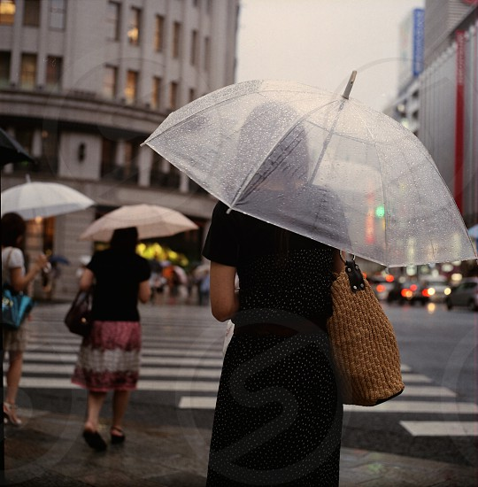 human wearing black dress holding clear umbrella walking across street building and other humans with umbrellas in background photo