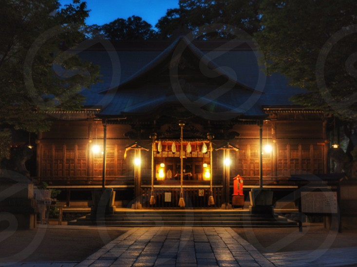 photo of brown wooden house with light near green trees at nighttime photo