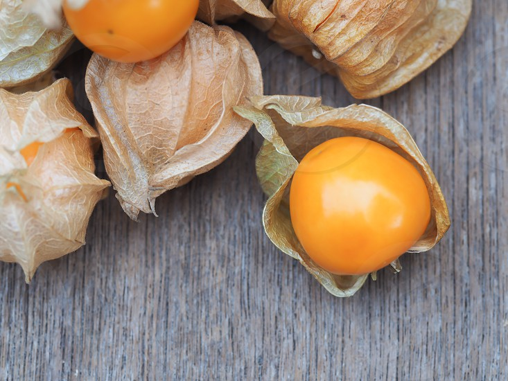 fresh cape gooseberry photo