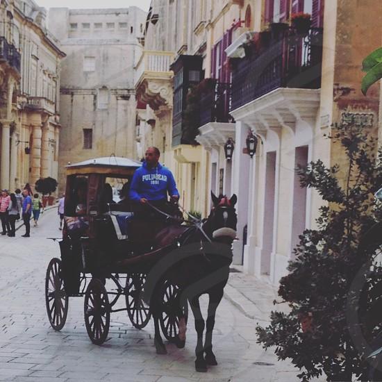 Silent city Malta mdina horse city horse and carriage  photo
